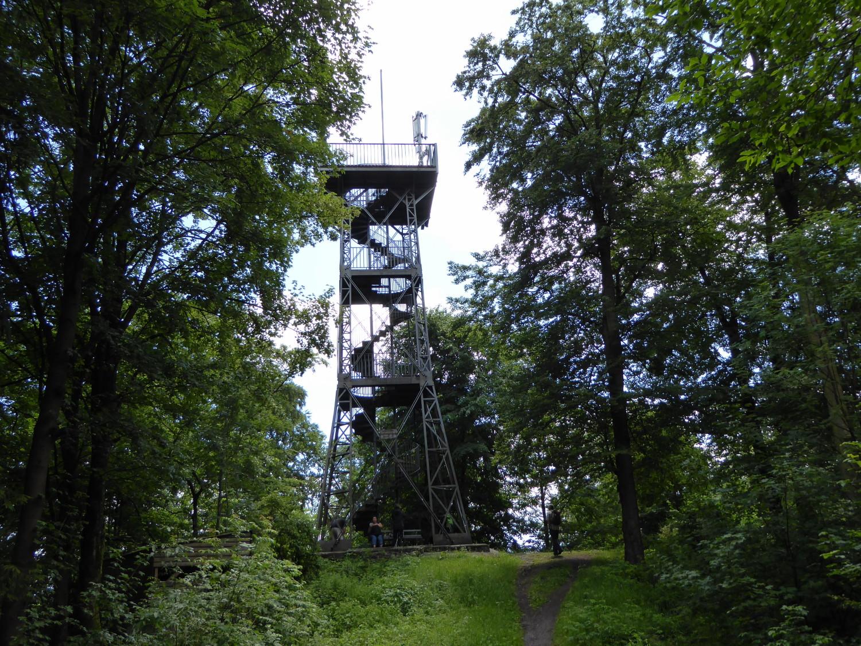 Harzstuermer_44